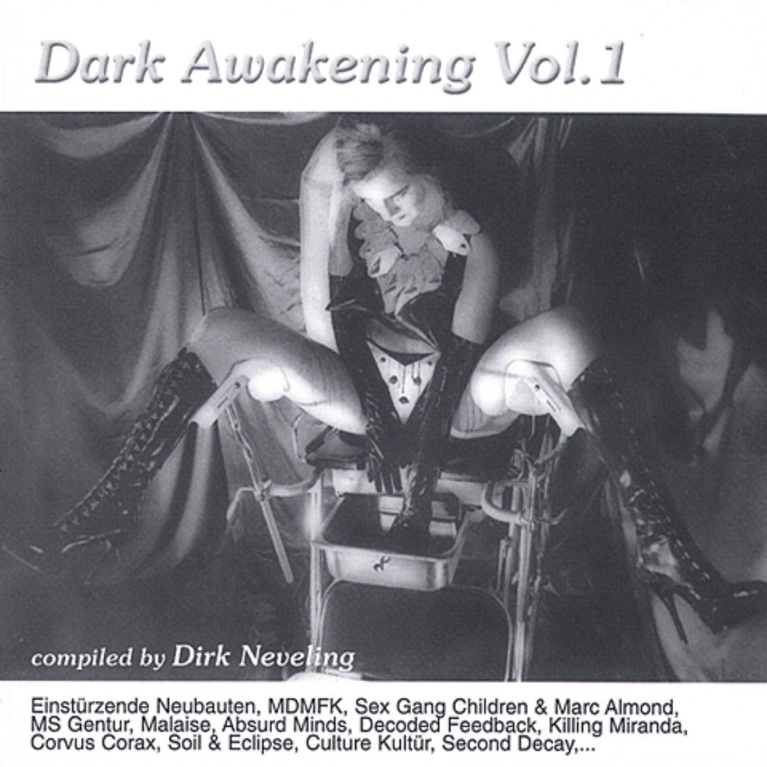 Dark Awakening, Vol. 1