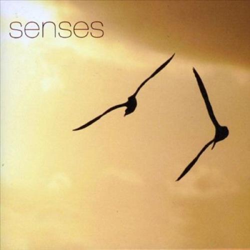 Senses [Sony]