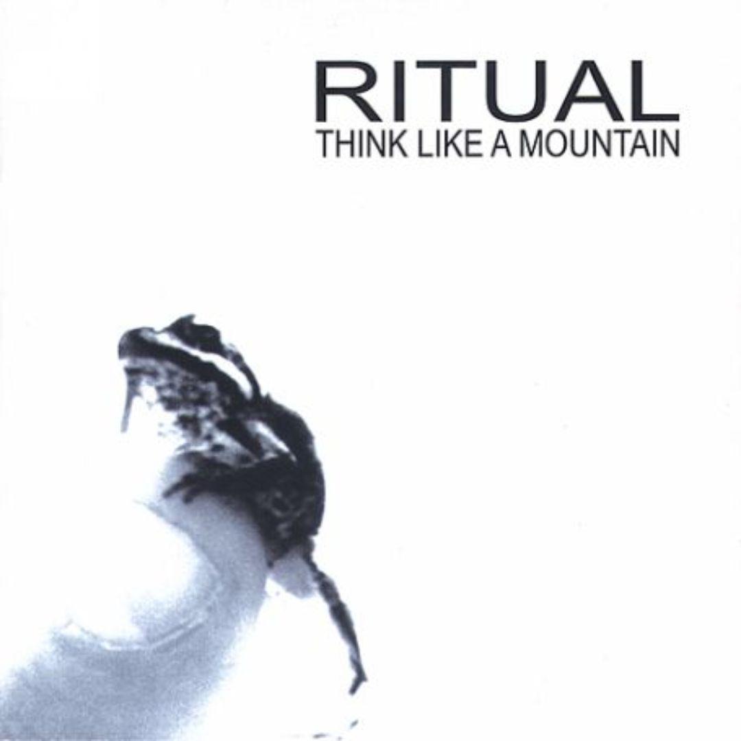 Think Like A Mountain
